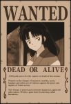 Sango Most Wanted by RivaAnime