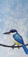 Forest Kingfisher bookmark by tuftedpuffin