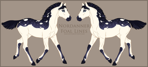 Nordanner Foal A1163 by soulswitch