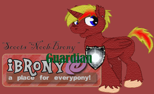 Ibrony banner thingy by ScootsNB