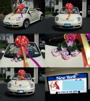 My New VW BEETLE PINWHEEL by Kittylover9399