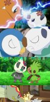Pokemon's Fight and Arguments