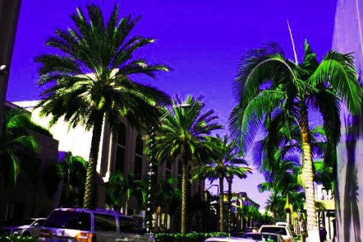 Rodeo Drive by PennyDior