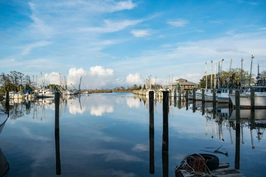 Apalachicola Waters by Grandlxves