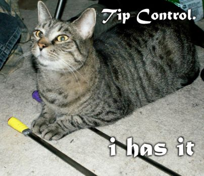 Tip control cat by frawgzdezignz