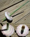 White Sands Flower, Recycled Paper Spindle by flufdrax