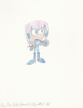 Sky the Echidna by mastergamer19