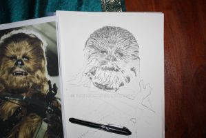 Chewbacca WIP2 by Bluelisamh