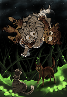 Warrior Cats: Wanderers by WhiteLilySong