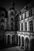 Chambord 3 by rhipster