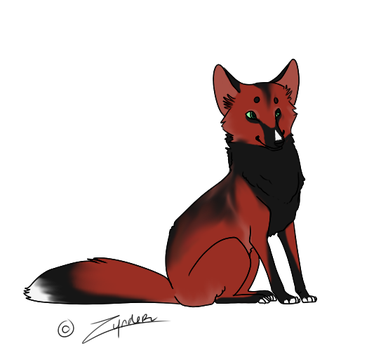 CardinalFox : SOLD by OpticalColors