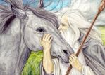 Shadowfax and Gandalf Reunited by peet