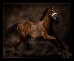 Thoroughbred Legends- Red Rum by Jullelin