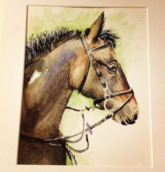 Horse - watercolour by 12LucyJ34