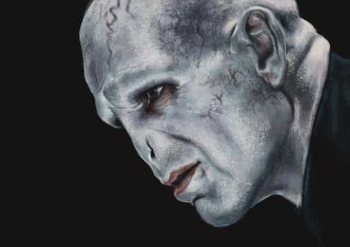 Voldemort by laurahough