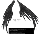 Wings of Madness - Black by Thy-Darkest-Hour