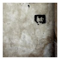 Walls May Cry Black Tears by Pierre-Lagarde