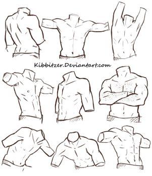 Male Torso Reference Sheet by Kibbitzer