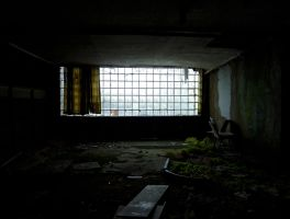 Indoor-Nature by Risen-From-The-Ruins