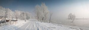 Winter 3-panorama by LCristian