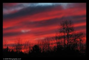 Sunset From My Roof 3 by picworth1000wrds