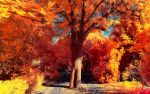The colors of Autumn - Part III by myINQI