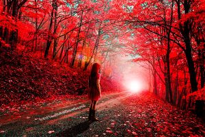 Steps of fire in the scarlet forest by ElFlautistaConGorra
