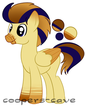 Pony Adopt 5 :CLOSED: by coopers-cave