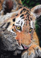 Young Richard Parker by ISG-Art