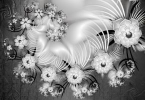 White Flowers On Satin by coby01