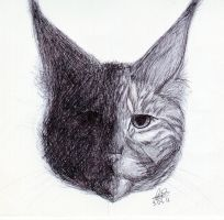 Ball Point Pen Cat by Sarcastic-Deviantess
