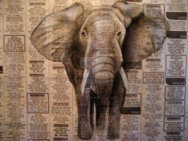 Charcoal Elephant on Newspaper by salt-lake-bri