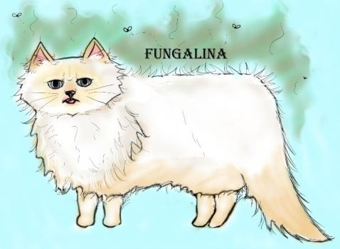 Fungalina by FairLily