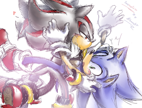 SonicXShadow by BloomTH