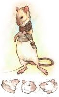 Sawyer Rat by Katweet