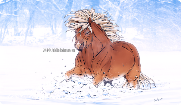 Ponies and Winter by Jullelin