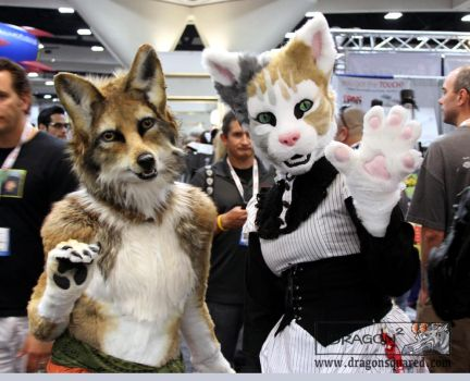 Coyote and Cat at SDCC by Dragonsquared