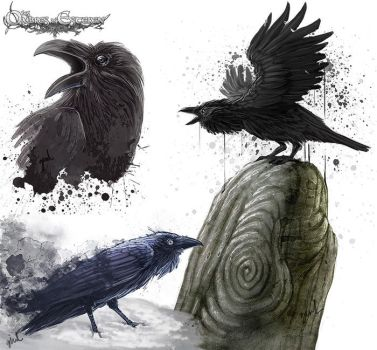 Crows by ginL