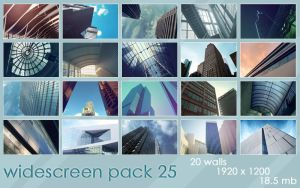widescreenpack 25 by ether
