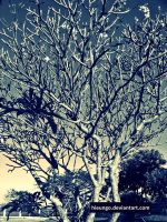 Tree in winter by hieungo