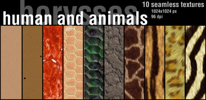 human and animals by borysses