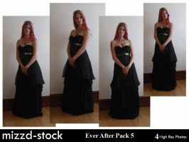 Ever After Pack 5 by mizzd-stock