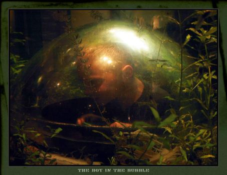 The Boy In The Bubble by transfusion