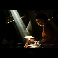 The cook by juhe