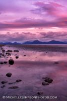 Pink Glow by MSimpsonPhotos