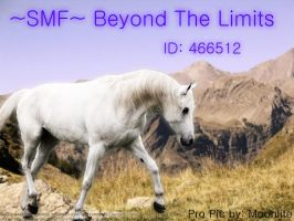 SMF Beyond The Limits by MoonliteHoofbeats