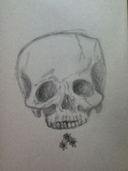 Skull and Daisys by JesusHexedMe