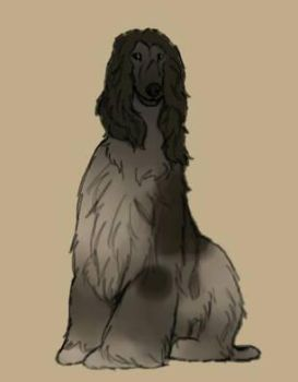 Dog Study #1- Miss Jackson by TheWolfLover2003