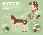 Pyttis 2015 by Pyttinski