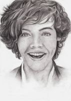 Harry Styles by RomcaS